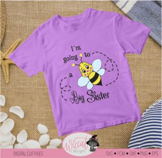 Bee Big sister announcement