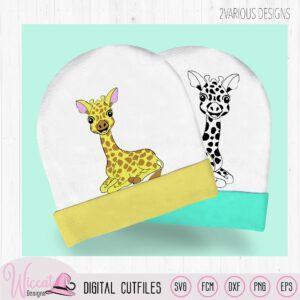 Little Giraffe laying down
